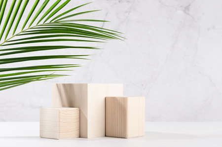 Summer modern showcase with set wooden podiums with green palm leaf in sunlight, shadow on white board, gray marble wall for cosmetics product display. 免版税图像