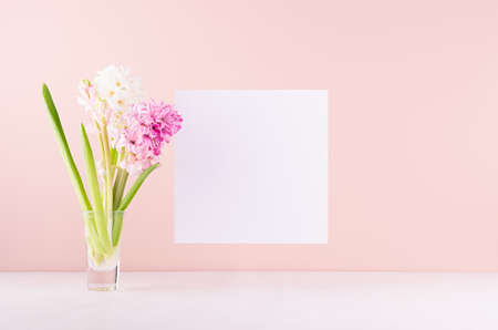 Soft light exquisite pink hyacinth flowers in glass vase with white blank paper for text on white wood table, romantic springtime background.