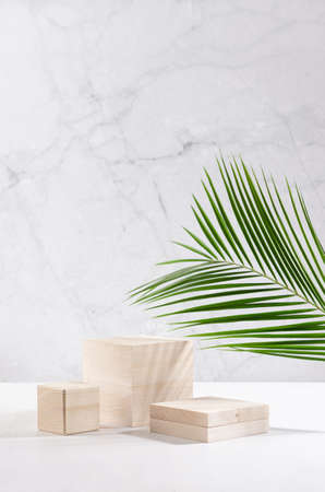 Wooden beige podiums with green palm leaf in soft light white interior with marble wall for display and presentation produce, cosmetics, vertical.