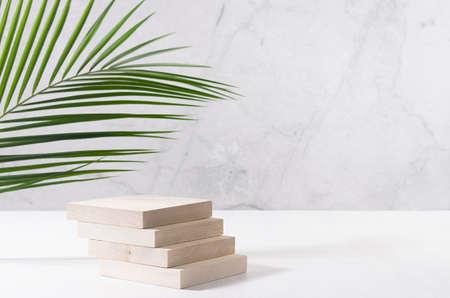 Natural wood podium with green palm leaf in white and gray marble interior with sunlight and shadow. Showcase for cosmetic products, goods, shoes, bags, watches.