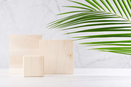 Natural style for cosmetics product display - wooden square podiums with green palm leaf, shadow on white wood table and gray marble wall.