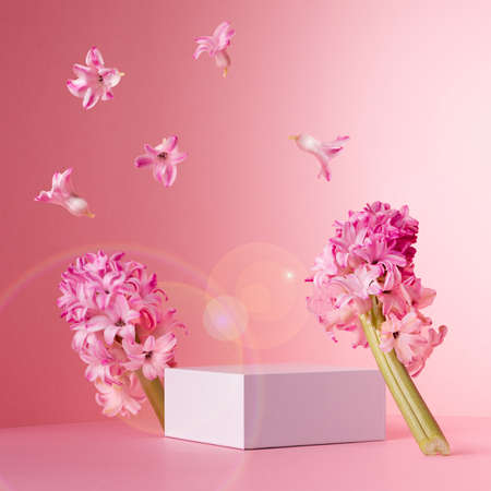 Fashion pastel pink mock up with white square podium for presentation cosmetic, accessories and produce in sunlight with levitate spring hyacinth flowers and sun flares, square. 免版税图像
