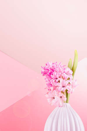 Fresh delicate spring background with hyacinth flower for easter in white vase with sunbeam, sun flare on pastel pink background, copy space, closeup.