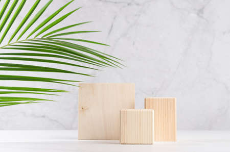 Set of natural wood square podiums with green palm leaf in white and gray marble interior with sunlight and shadow. Showcase for cosmetic products, goods, shoes, bags, watches.
