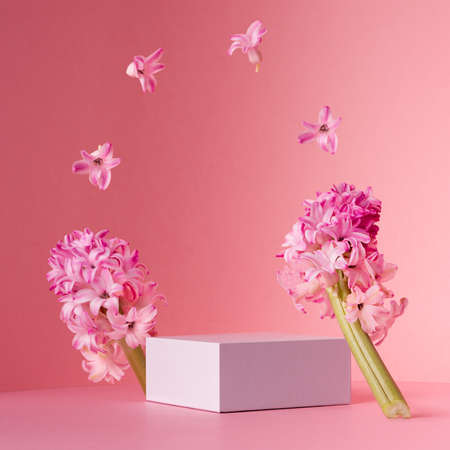 Delicate spring mock up for cosmetic and product display with white square podium, tender hyacinth flowers flying as frame on pastel pink background.