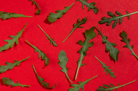 Fresh green arugula leaves with shadow on red background, flat lay, pattern.