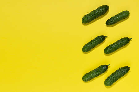 Vegetable colorful abstract pattern - green young cucumber with shadow as border on yellow background, top view, copy space.
