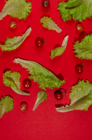 Ripe cherry tomato, green salad leaves with shadow on red background, top view, copy space, vertical. Food color pattern.