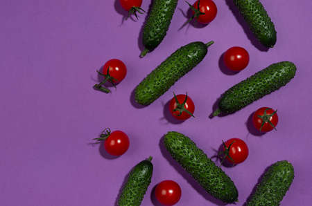Bright cherry tomatoes and green gherkin cucumber as border in hard light with shadow on violet background, flat lay, copy space. Food colorful pattern. 免版税图像