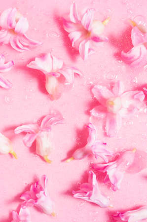 Fresh pink hyacinth flowers with glowing golden shimmer slime as abstract cosmetic pattern, vertical.