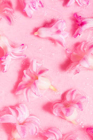 Wet pink hyacinth flowers under transparent slime with golden glitter as cosmetic spring fresh floral pattern, top view, vertical.