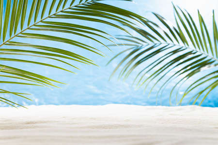 Sunny tropical beach with green palm leaves as frame, white sand, sunlight, horisont, blue sea view. Summer vacation background for design, presentation. 免版税图像