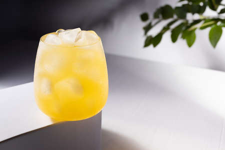 Cold fresh summer orange cocktail with vodka, ice cubes in sunlight with shadows, green leaves on branch on white table with gradient dark wall or outdoor.
