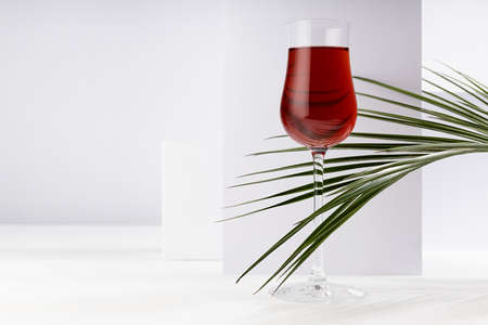 Red wine in elegant glass with summer tropical green palm leaf in sunlight with striped shadows in white abstract interior in minimal geometric style. 免版税图像