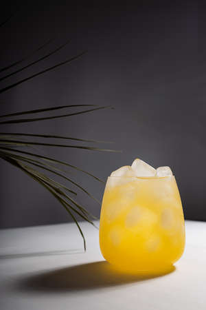 Misted tropical orange juice with ice cubes in glass on podium in sunlight with shadows, palm leaf in white and dark black abstract space or outdoor, vertical.