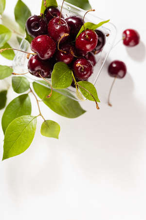 Summer vitamin fresh organic food - wet ripe red cherries in plastic box with green leaves, water drops on soft light white wood table in sunlight, top view, copy space, vertical.