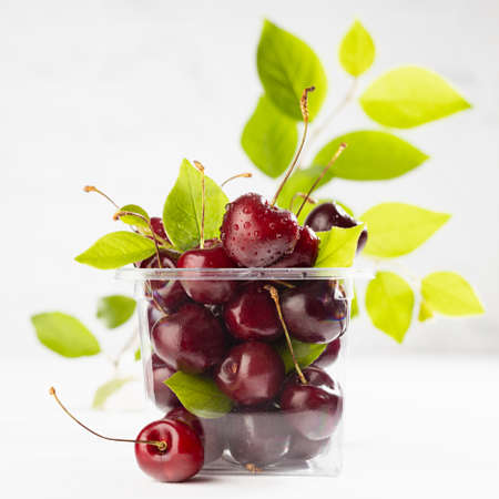 Bright ripe wet red cherry in plastic box as organic produce in wrapping on white wood table and marble tile wall in modern interior, square 免版税图像