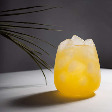 Cold fresh summer orange cocktail with vodka, ice cubes shining in sunlight with shadows, green palm leaf on white table with dark gray wall, square. 免版税图像