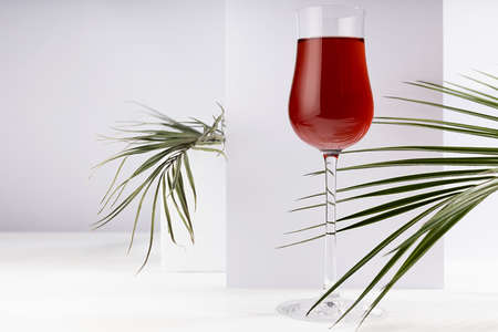Red porto wine in luxury high glass with green palm leaf in hard light with shadow in soft light white abstract interior with geometric surfaces in minimal style.