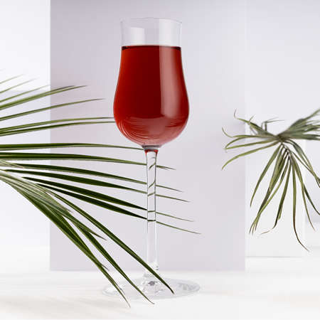 Red port wine in rich high glass with decor of green palm leaves in sunlight with shadow in modern minimal abstract white interior with geometric spaces, square. 免版税图像