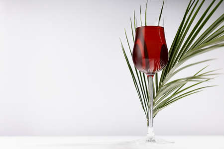 Red wine in elegant glass with green palm leaf in sunlight with striped shadows and reflection on soft light wood table and white wall.