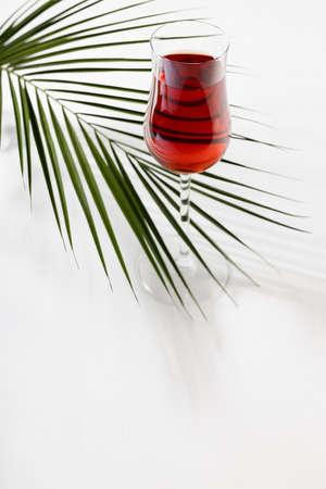 Red wine in elegant glass with green palm leaf in sunlight with shadow on soft light white wood table, top view, vertical. 免版税图像