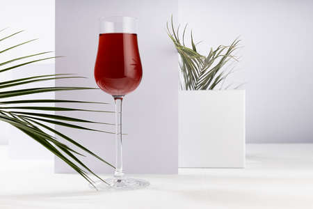 Red port wine in rich high glass with decor of green palm leaves in sunlight with shadow in modern minimal abstract white interior with geometric spaces. 免版税图像