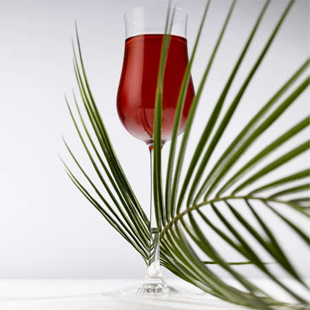 Red porto in luxury high glass decorated elegant curved green palm leaves in hard light with shadow in soft light white abstract interior wooden table, closeup, square.