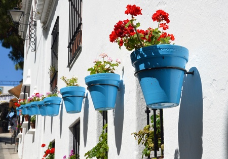 geranium color: Flowers in a flower pot on the wall Stock Photo