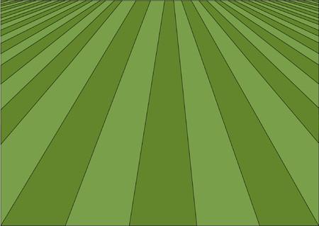 cautious: Ilustraci�n vectorial c�sped perfecto