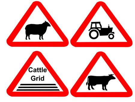 sheep warning: Countryside hazard signs