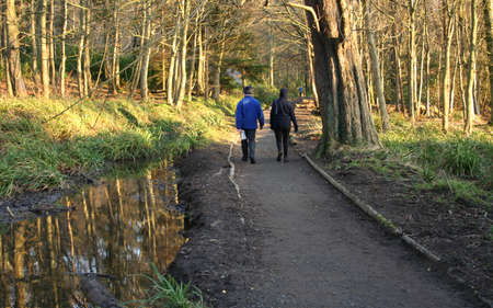 couple walking along path through woodlands photo
