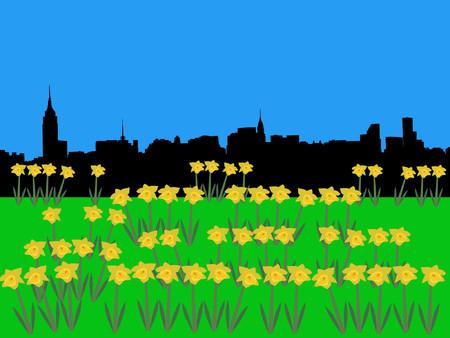 manhatten skyline: Midtown Manhattan Skyline im Fr�hling mit Narzissen