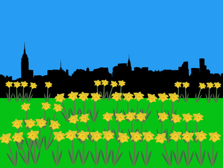 Midtown manhattan skyline in springtime with daffodils Illustration