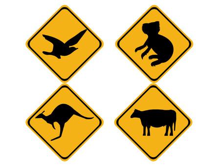 Australian wildlife koala bear, kangaroo, bird and cow Stock Vector - 825810