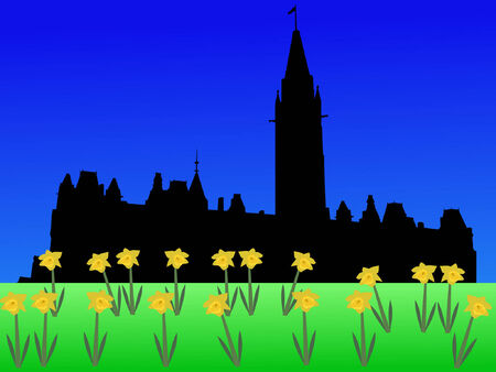 Canadian parliament in spring with daffodils Vector