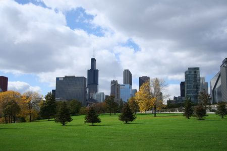 chicago skyline from Grant park including Sears Tower photo