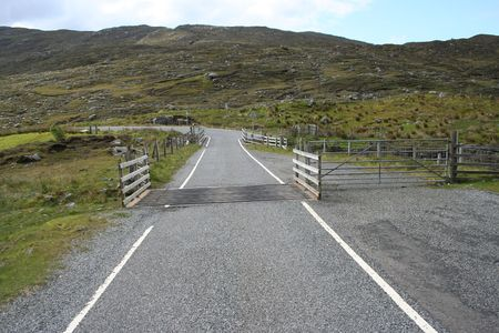cattle grid: cattle grid on road in countryside