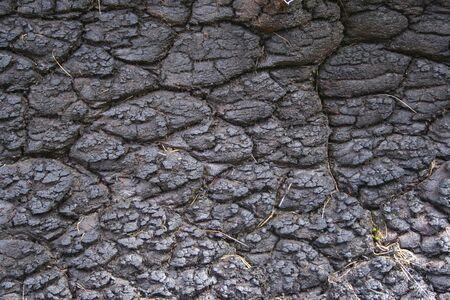 turba: craqueados fondo negro una turba escocesa antigua de combustible