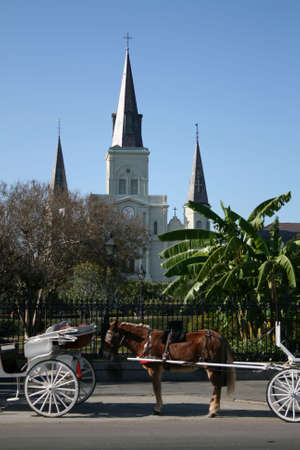 horse and carriage with St Louis Cathedral Jackson Square New Orleans photo