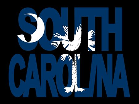 and south carolina: overlapping South Carolina text with their flag illustration