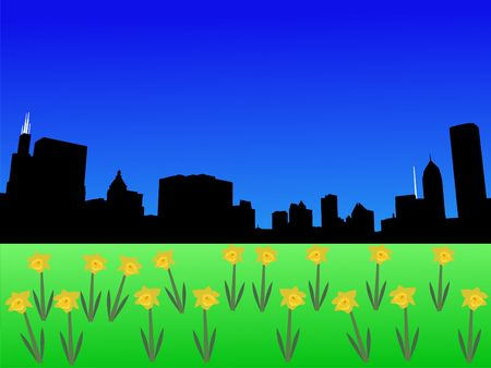 Chicago skyline in spring with daffodils illustration