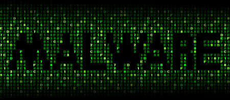 malicious software: Malware text on hex code illustration Stock Photo