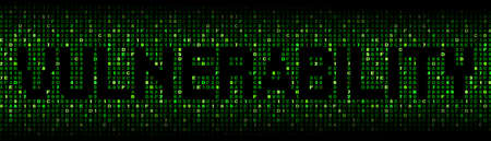 malicious software: Vulnerability text on hex code illustration