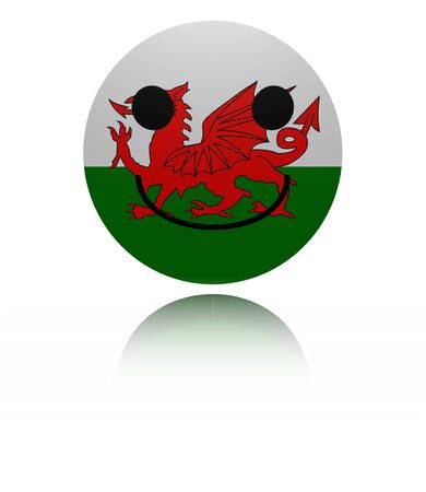 in reflection: Wales happy icon with reflection illustration