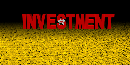 Investment text with Hong Kong flag on coins illustration