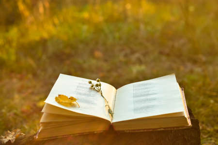 Vintage book of poetry outdoors with flower on it