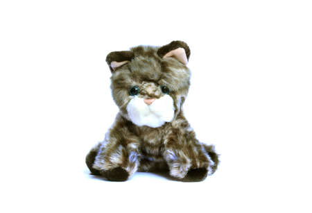 pathetic: Sad soft toy kitten with blue eyes isolated on white background