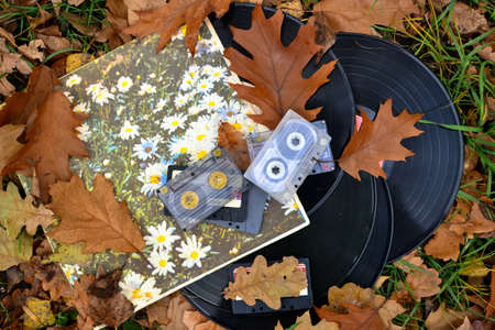 cassettes: Old cassettes and records with fallen leaves, vintage style