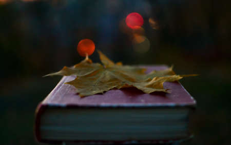 poems: book of magic in the evening with fallen leaf on it Stock Photo